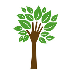 green tree with leaves and stem in form hand vector image