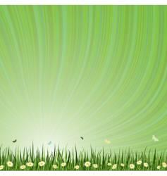summar background vector image