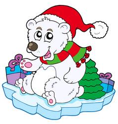 christmas polar bear vector image
