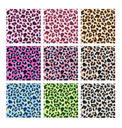 colorful leopard print vector image
