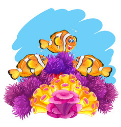 crown fish playing in coral reef vector image