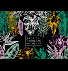Exotic flora frame tropical plants exotic flowers vector