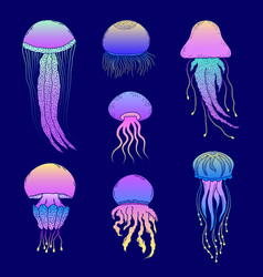 Set hand drawn jellyfishes vector