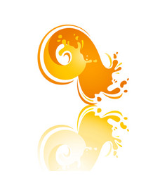 splash color wave with reflection vector image