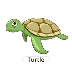 Turtle underwater animal cartoon vector image