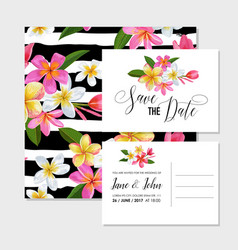 wedding invitation template with plumeria flowers vector image