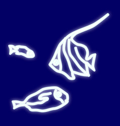 the image of the fish vector image