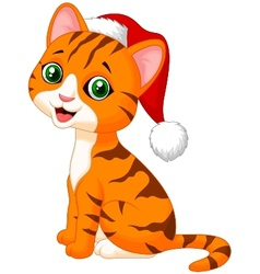 Cute cat cartoon wearing red hat vector image vector image