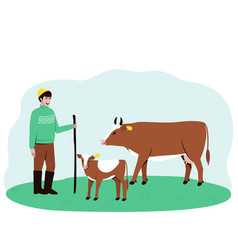 A shepherd leads a cow and a calf to pasture vector