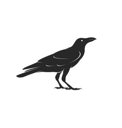 Crow design isolated on white background vector
