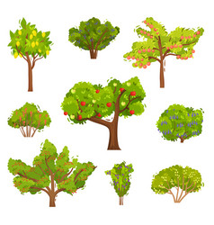 Flat set of fruit trees and berry bushes vector