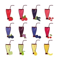 Fruit and berries smoothie set vector