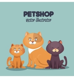 pet shop cats and dog care mascot vector image