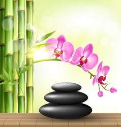 Stack of spa stones with orchid pink flowers vector