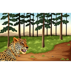 A leopard at the forest vector image vector image