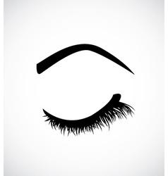 Eyelashes vector image