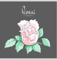 A gentle pink rose vector