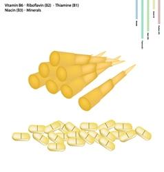 Bamboo Shoot with Vitamin B1 B2 B3 and B6 vector