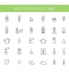 Garden and Potted Plants Care Instructions Icons vector