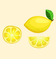 lemon fruit half and slice vector image