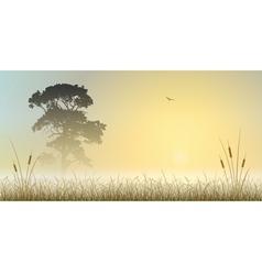 Misty Landscape vector