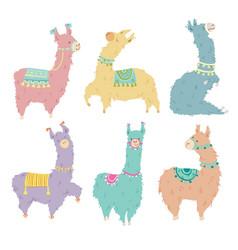 set of six pretty hand drawn lamas vector image
