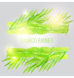 watercolor bamboo banner with green leaves vector image