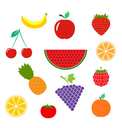 color fruits icon isolated on background modern f vector image