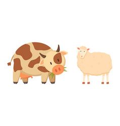 cow and sheep isolated cartoon style animal vector image