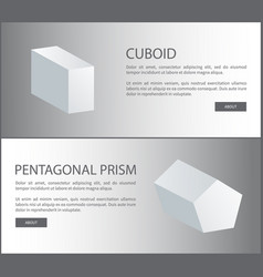 Cuboid and pentagonal prism 3d shaped web vector