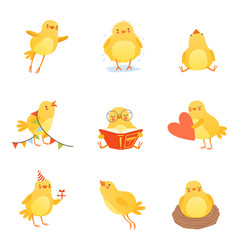 cute chicken in various situations trying to vector image