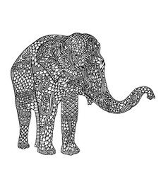 elephant in asian style mandala pattern for adult vector image