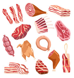 fresh meat icon set clorful set of appetizing vector image