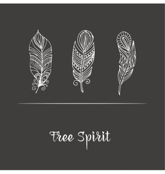 Hand drawn bohemian feathers on chalkboard vector image