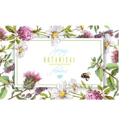 Herbal horizontal banner vector