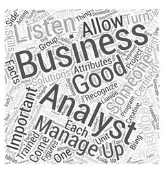 Importance of a business analyst Word Cloud vector