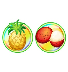 Pineapple and rambutan on round badges vector image