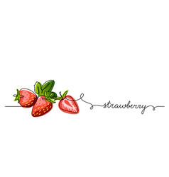 strawberry color background vector image