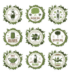 Vintage colored olive emblems set vector