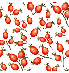 wild rosehip seamless pattern vector image