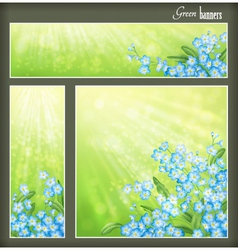 Green banners set with flowers and blurred sunrays vector image