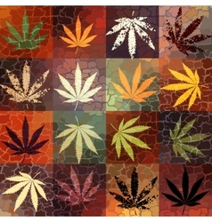 grunge hemp leaves vector image