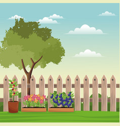 pot plants tree field fence vector image