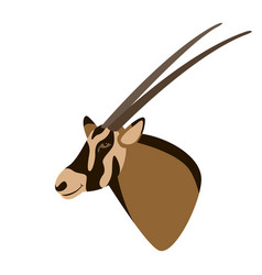 antelope head flat style vector image