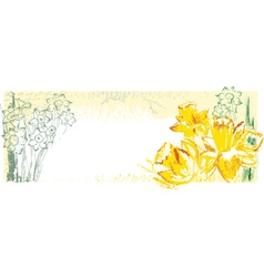Background with narcissus vector
