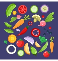 Vegetable Salad Ingredients Collection vector