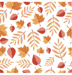 seamless pattern with isolited autumn leaves on a vector image vector image