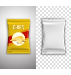 Chips Packaging Design vector image
