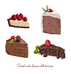 hand drawn delicious cake slices set vector image