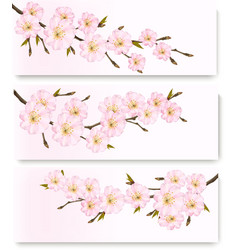 Three flower banners vector